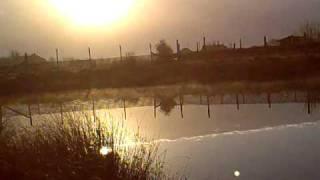 Hambleton Fisheries