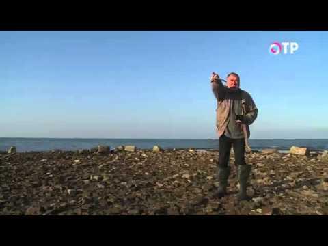 видео: Малые города России: Молога - город, затопленный в Рыбинском водохранилище