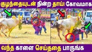 குழந்தையுடன் நின்ற தாய்! கோவமாக வந்த காளை செய்ததை பாருங்க! Pongal | Jallikattu | Alanganallur |