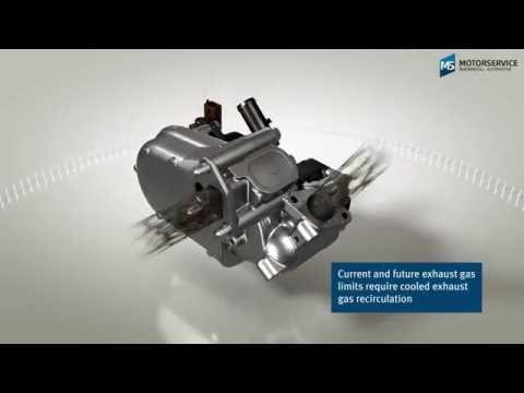 Function of an EGR cooler (3D animation) - Motorservice Group -