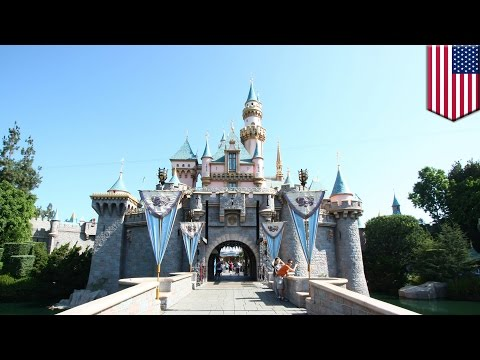 California Disneyland measles outbreak: officials tell people without vaccines to avoid Disneyland