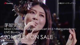 2016年2月24日(水)発売「Minori Chihara Symphonic Concert 2015 〜Re...