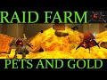 Farming raids for pets and gold in WOW