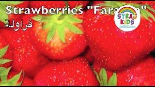 Fruits | Arabic & English | الفواكة باللغة العربية و الانجليزية
