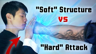 "Wing Chun - ""Soft"" Structure vs 917+ pound ""Hard"" Attack! screenshot 3"