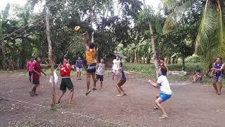 Barbie volleyball ..