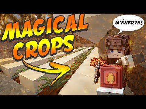 COMMENT FAIRE UNE FARM A MAGICAL CROPS SUR PALADIUM!