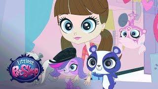 Meine Littlest Pet Shop-Season 3 - 'Aw Schaut Sie Euch an!' Offizielle Clip