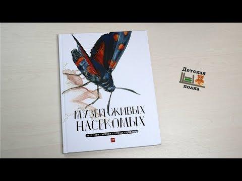Музей живых насекомых Ф.Лассерр 4+ | Детская книжная полка