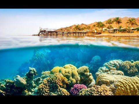 Snorkeling in SHARM EL SHEIKH   RAS MOHAMMED   DAHAB  AUGUST 2017 4K