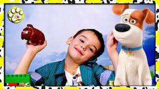 Супер Герои мультфильм Тайная ЖИЗНЬ Домашних ЖИВОТНЫХ 🐷🐶
