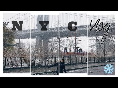 The Mini Life Vlog #2: Travel New York City