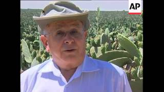 Farmers push cactus as answer to world hunger