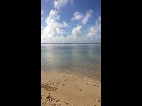 Beachfront - Malha