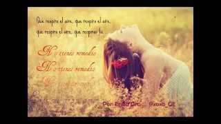 Amor de mis amores Natalia Lafourcade & Ximena Sariñana con LETRA