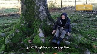 Gambar cover 94 წლის ოლია ბებო: მილიონი რომ მომცენ, ხეს არ გავყიდი