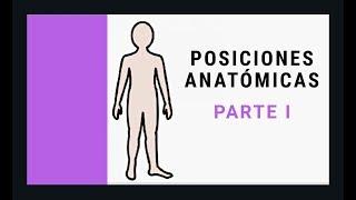 Posiciones Anatómicas Del Paciente Imágenes Oposición Sanidad Tcae Sanidad Ope Youtube