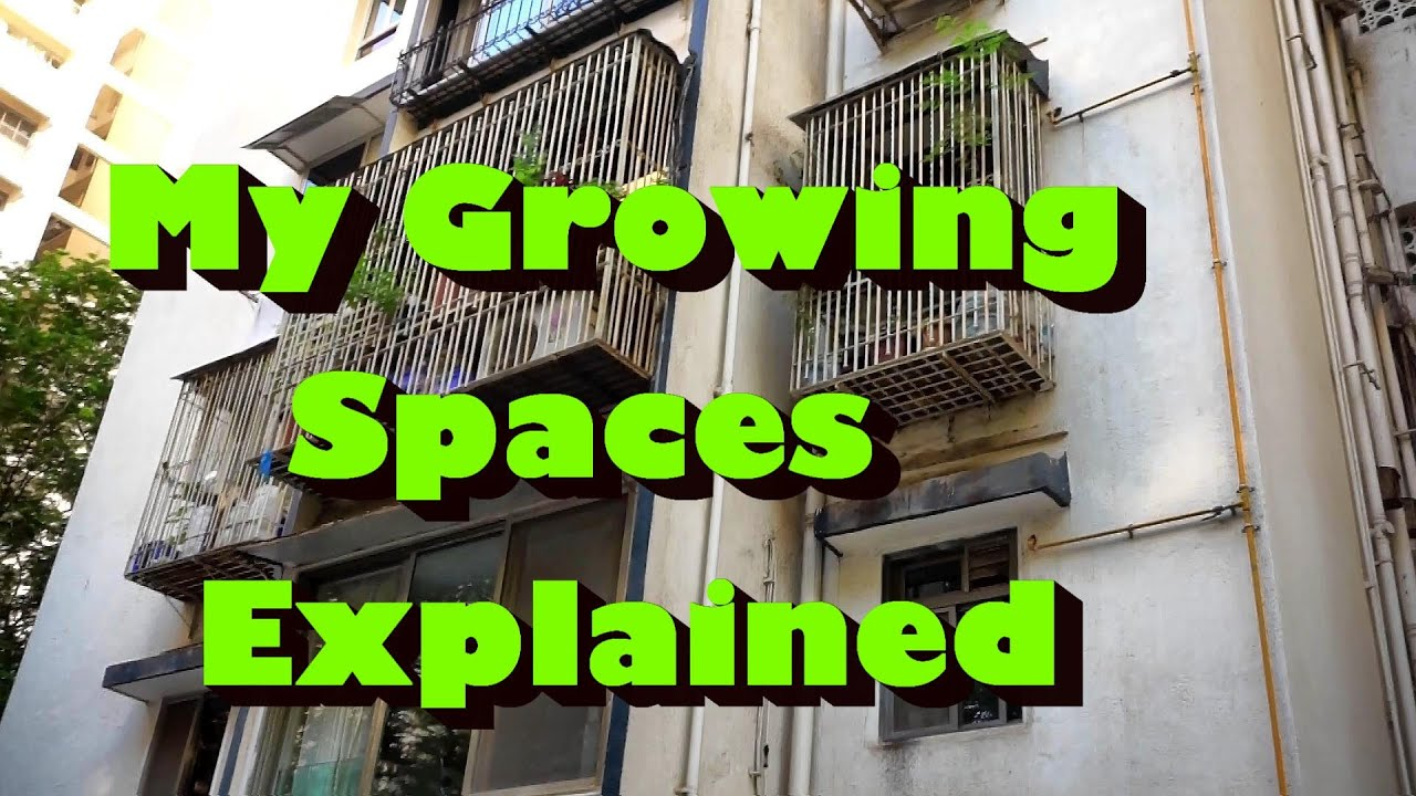 Growing food small spaces living