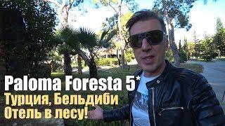 Paloma Foresta Resort Spa 5 Ex Paloma Renaissance Турция Кемер Бельдиби Обзор отеля
