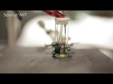 MIT develops new way to clear Pollutants from Water | QPT