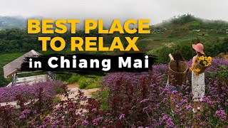 See the Best Place to Relax in Chiang Mai