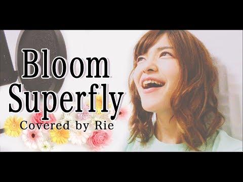 """Bloom / Superfly 『ゼクシィ』25周年テーマソング「""""愛を、祝おう。""""」カバー♪ 歌ってみた♪"""