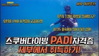 세부 스킨스쿠버다이빙 PADI 오픈워터 자격증, 야 너…