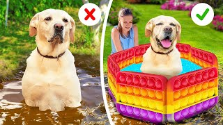 So Funny! 27 Simple Hacks And Useful Gadgets for Your Dog❤