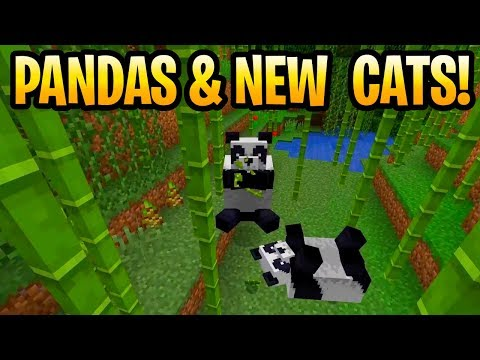 Minecraft Panda, New Cats & Scaffolding 1.14 Coming Soon! Holiday Update, Minecon Earth 2018 thumbnail