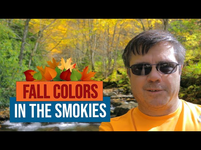 Fall Colors in the Great Smoky Mountains National Park
