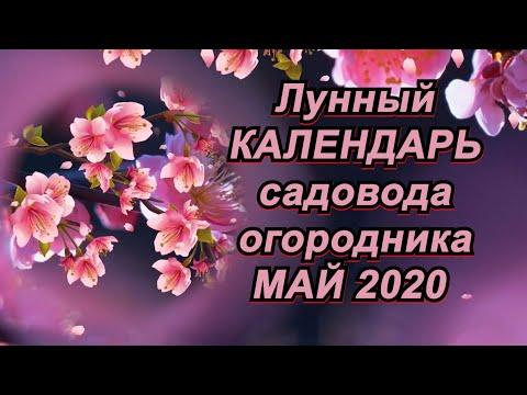 ЛУННЫЙ КАЛЕНДАРЬ САДОВОДА и ОГОРОДНИКА на МАЙ 2020 года.
