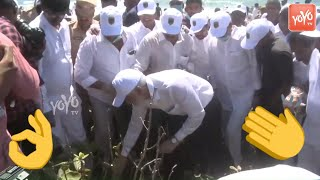 YCP MP Vijaya Sai Reddy Participates in Vizag Beach Cleaning Program | AP News | CM Jagan | YOYO TV