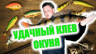 Рыбалка в Заполярье Хороший денек для рыбалки Рыбалка на окуня Хороший клев Крупный окунь
