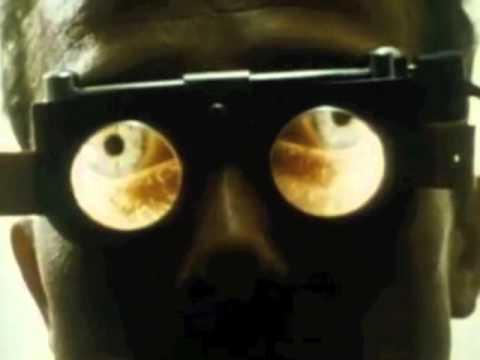 MOLECULE - Songes (Official Video)
