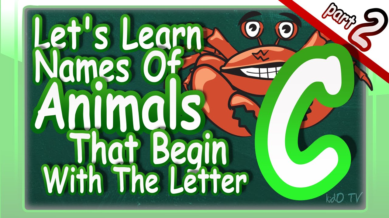 name an animal that starts with the letter n animals names in that begin with the letter c 23738 | maxresdefault