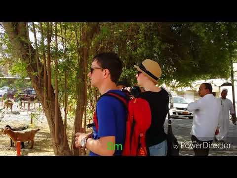 Weekend Road Trip To Oman   Nizwa Souq