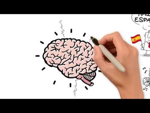 Vídeo Neurolinguistica curso