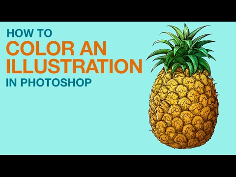 How to Color an Illustration in Photoshop