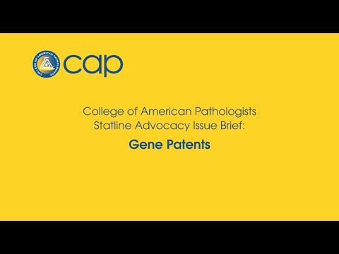 CAP Issue Brief: Gene Patents