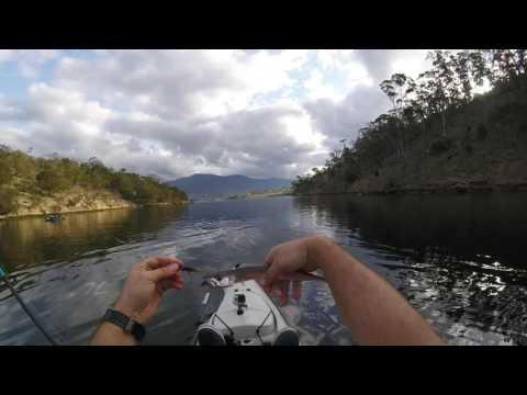 Derwent River Kayak Fishing - Bream, Flathead & Couta
