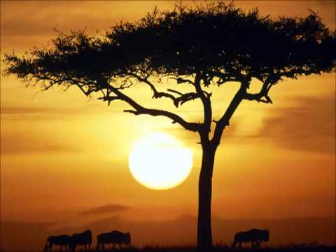 Vicky Sampson - African Dream