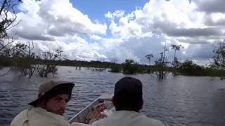 Amazonas Survival Trailer