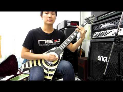 Gibson Zakk Wylde Flying V Custom With Floyd Rose Guitar
