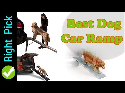 dog-ramp:-5-best-dog-ramps-|-best-dog-ramps-2018