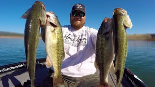 Bass Union Jigs Catch Mixed Bag of SOLID Lake Oroville Bass | Summer Jig Fishing with Joseph Orozco