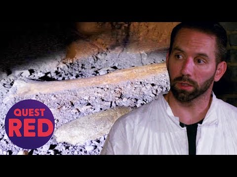 Nick Groff Finds
