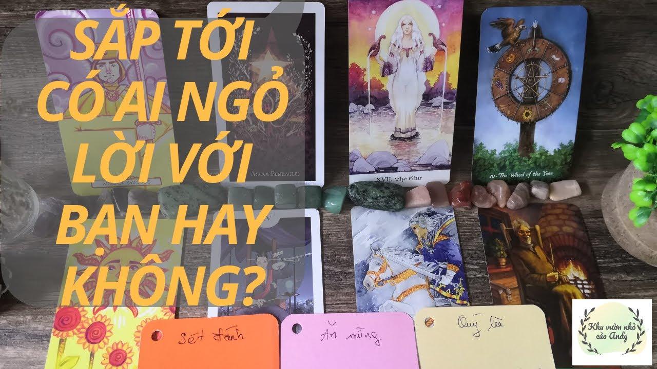 Chọn 1 tụ bài Tarot - Sắp tới có ai ngỏ lời với bạn hay không - Alo Andy