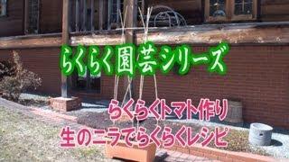 河村通夫のらくらく園芸11年6月 らくらくトマト作り・生ニラごま油