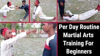 Per Day Routine Martial Arts Training For Beginners