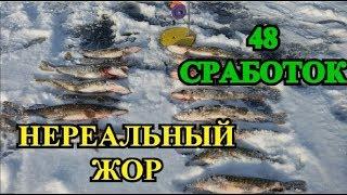 ЩУКА НА ЖЕРЛИЦЫ КАК С ПУЛЕМЁТА!!!48 СРАБОТОК!!!ЭТО НЕРЕАЛЬНО!!!